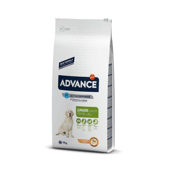 Advance Dog Maxi Junior