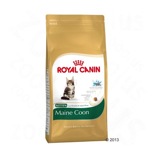Royal Canin Kitten Mainecoon