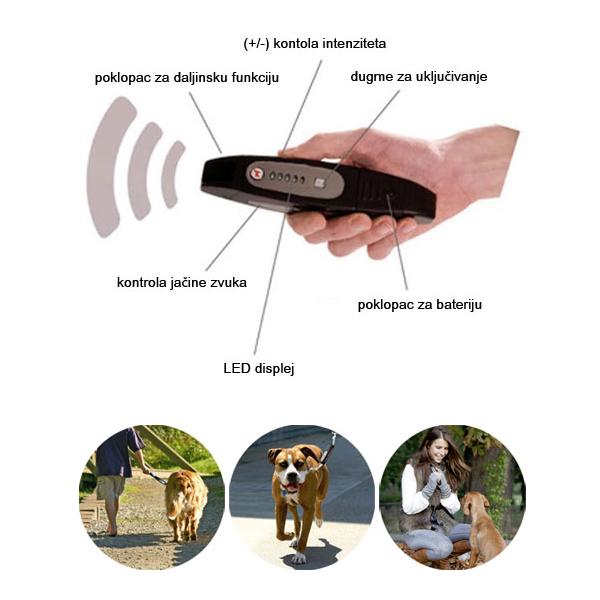 Dog E Walk Premium
