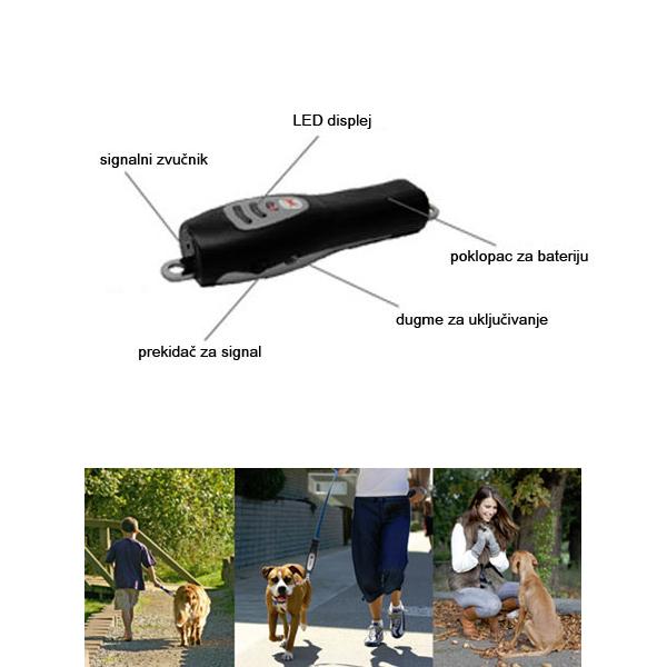 Dog E-Walk Basic