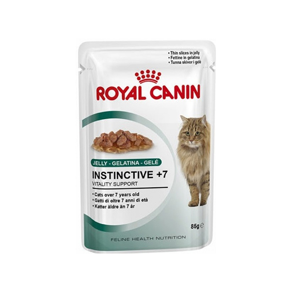Royal Canin Ageing + 12 in jelly vlažna hrana za mačke starije od 12 god