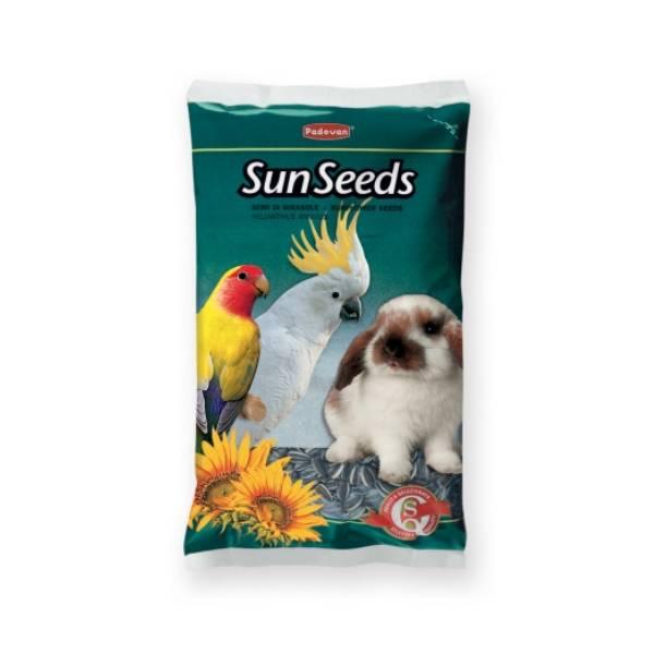 Padovan malo seme suncokreta