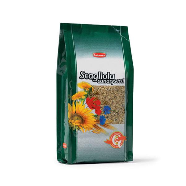 Padovan SCAGLIOLA seme za kanarince