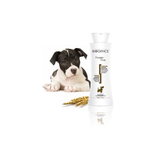 Biogance Protein Plus Shampoo univerzalni šampon za pse