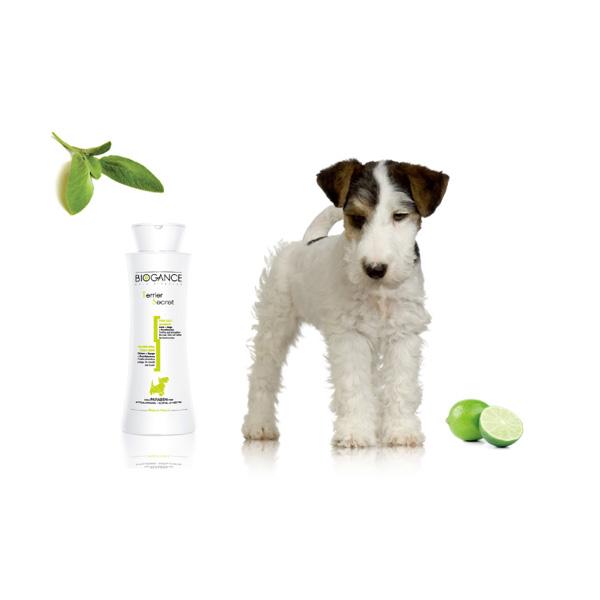 Biogance Terier secret šampon za pse sa kovrdžavom dlakom