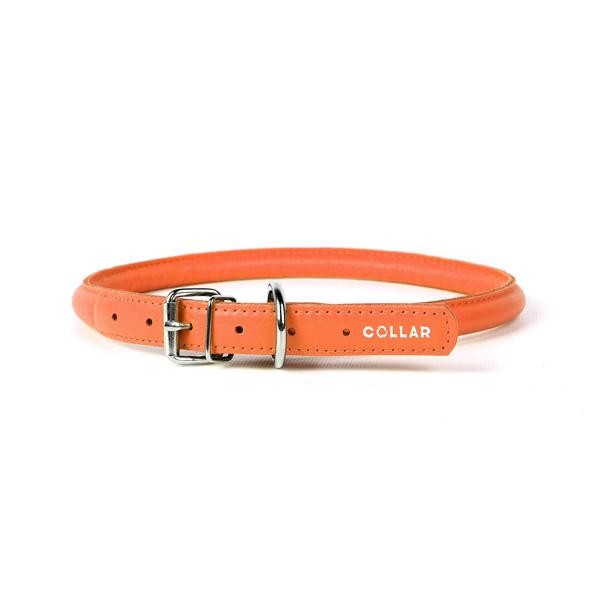 Collar ogrlica za pse okrugla narandžasta