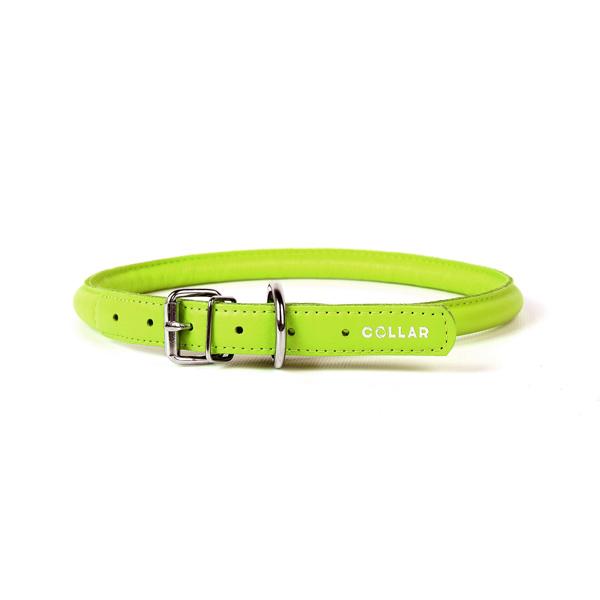 Collar ogrlica za pse okrugla zelena