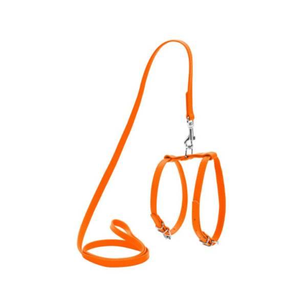 Collar povodac i am pas&maca, narandžasti