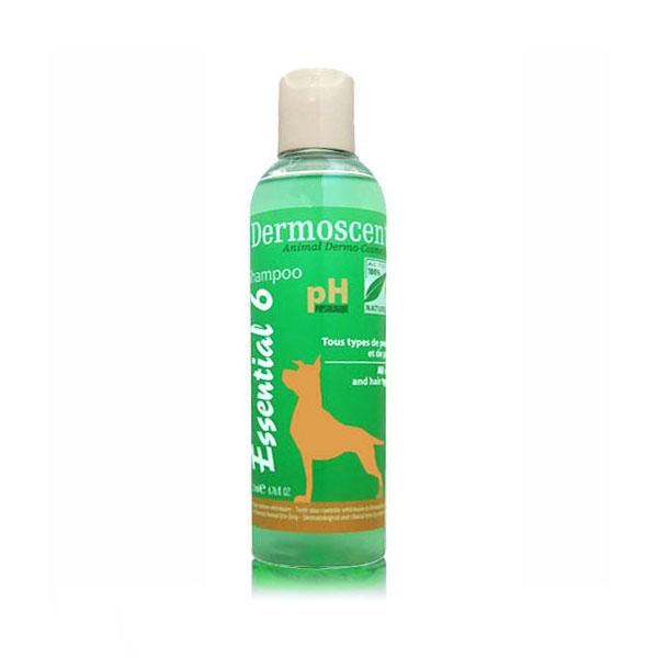 Dermoscent Essential 6 Shampoo za pse